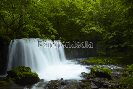 long exposure of rocky waterfall surrounded