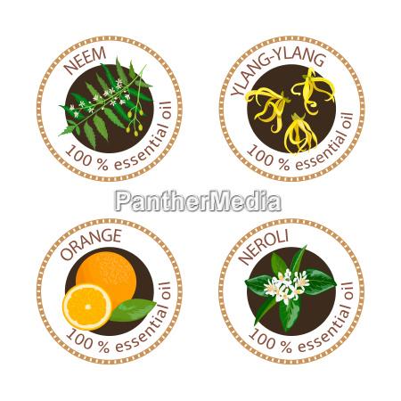 set of essential oils labels ylang