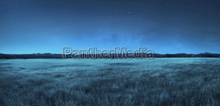meadow landscape at night time
