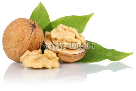 walnuts walnut nuts isolated isolated cut