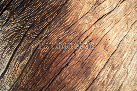 wood texture with natural pattern closeup