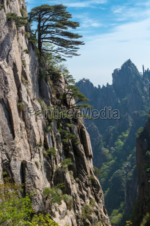 landscape shots of huangshan mountains in