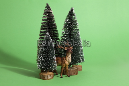 green forest firs and reindeer