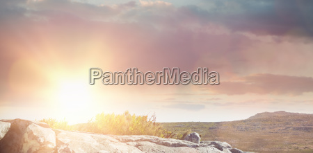 composite image of scenic view of