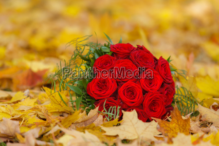 red roses as bridal bouquet for