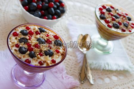 closeup of two yogurt dessert with