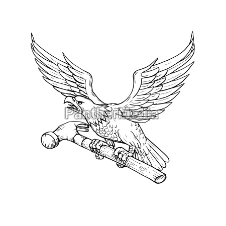 eagle clutching hammer drawing