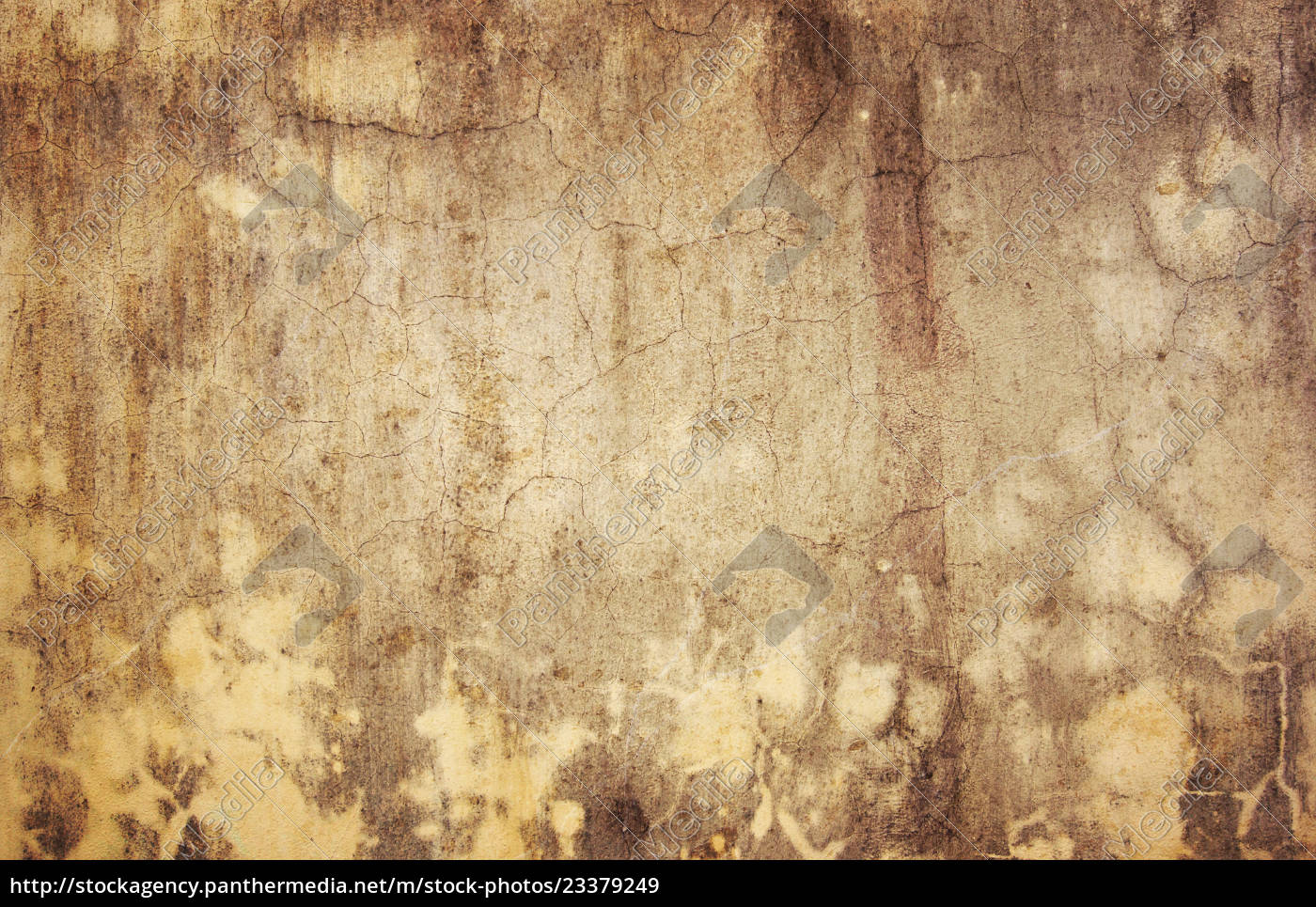 Royalty free image 23379249 , Vintage texture in grunge style