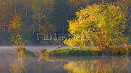 autumn at the pond near rehlingen