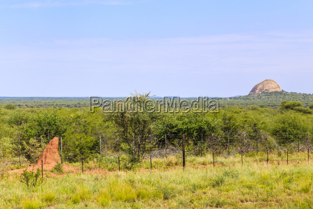 termite mound with landscape in namibia