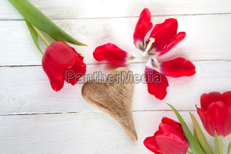 tulips with heart