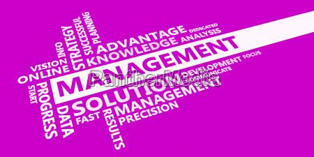 management business idea