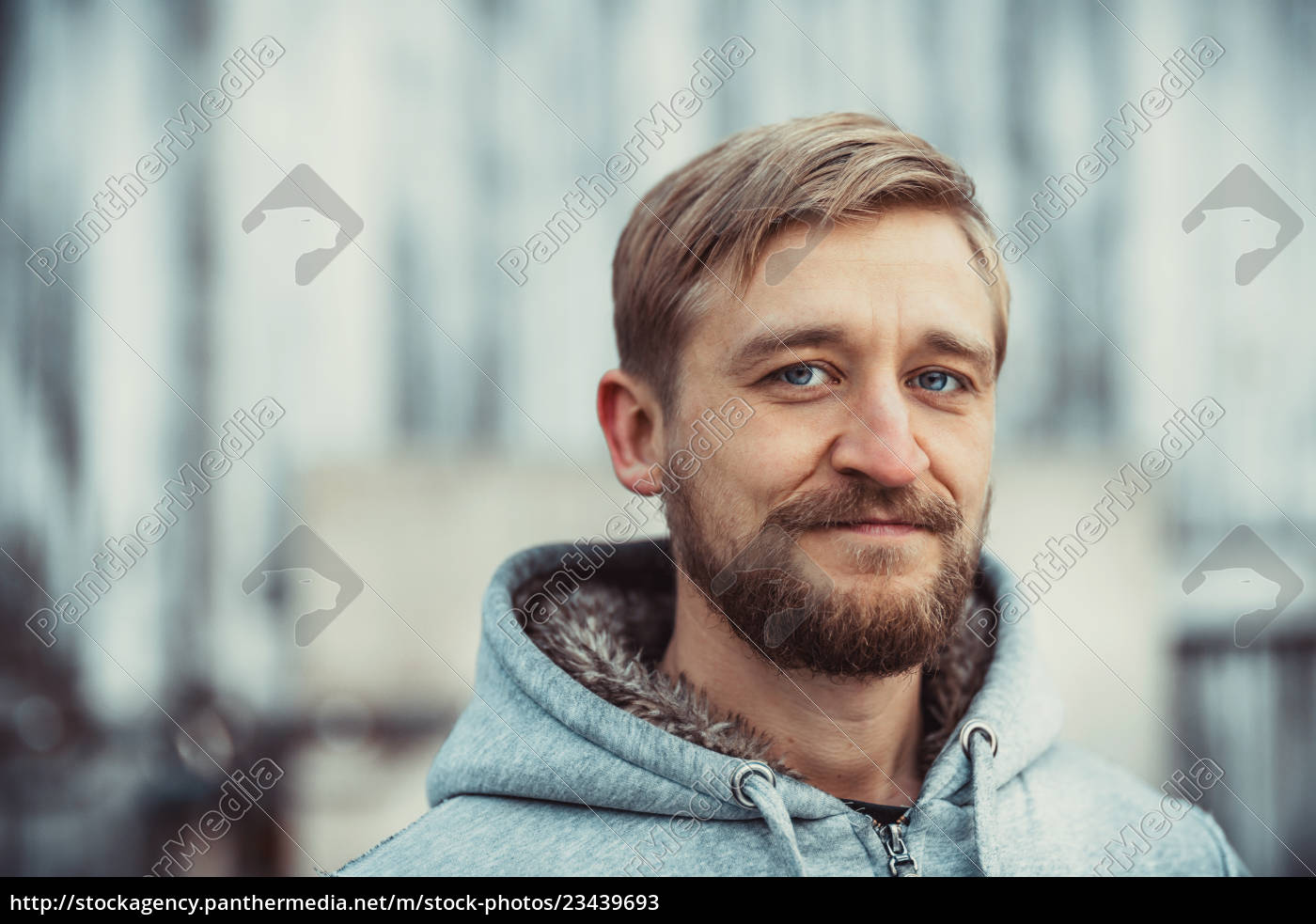 portrait, of, a, young, bearded, man - 23439693