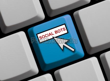 social bots online
