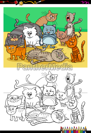 cats and kittens characters group color