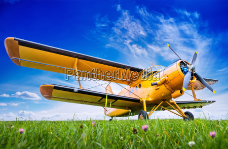 historic biplane on a meadow against