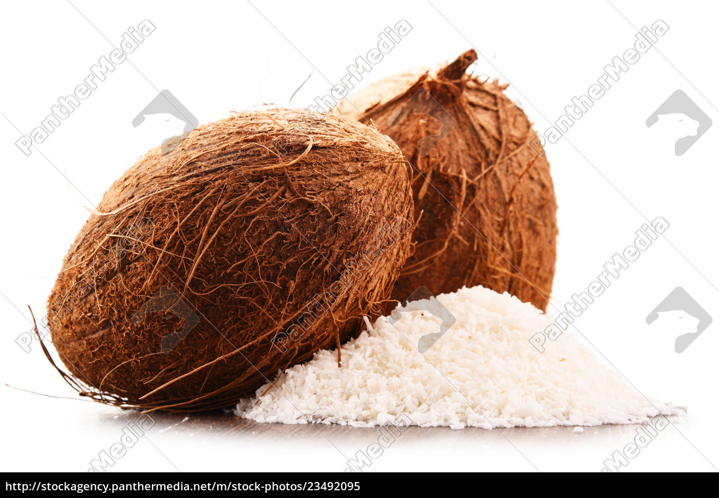 composition, with, shredded, coconut, and, shells - 23492095