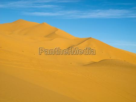 erg chubby moroccan desert