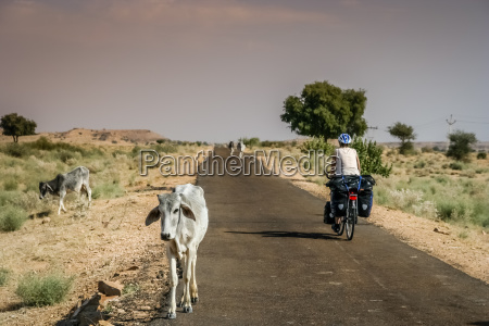 cycling in rajastham