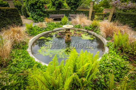 fountain in the rookery