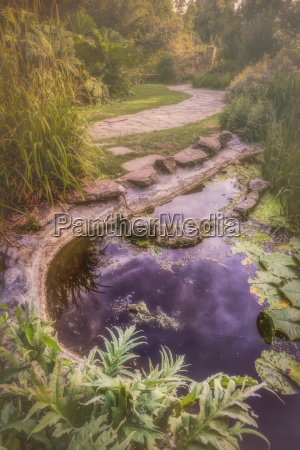 water pond in a park