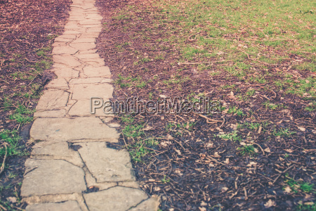 stony pathway in the park