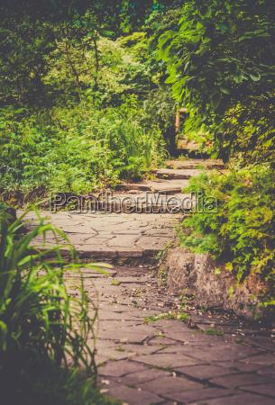 stony pathway in the park