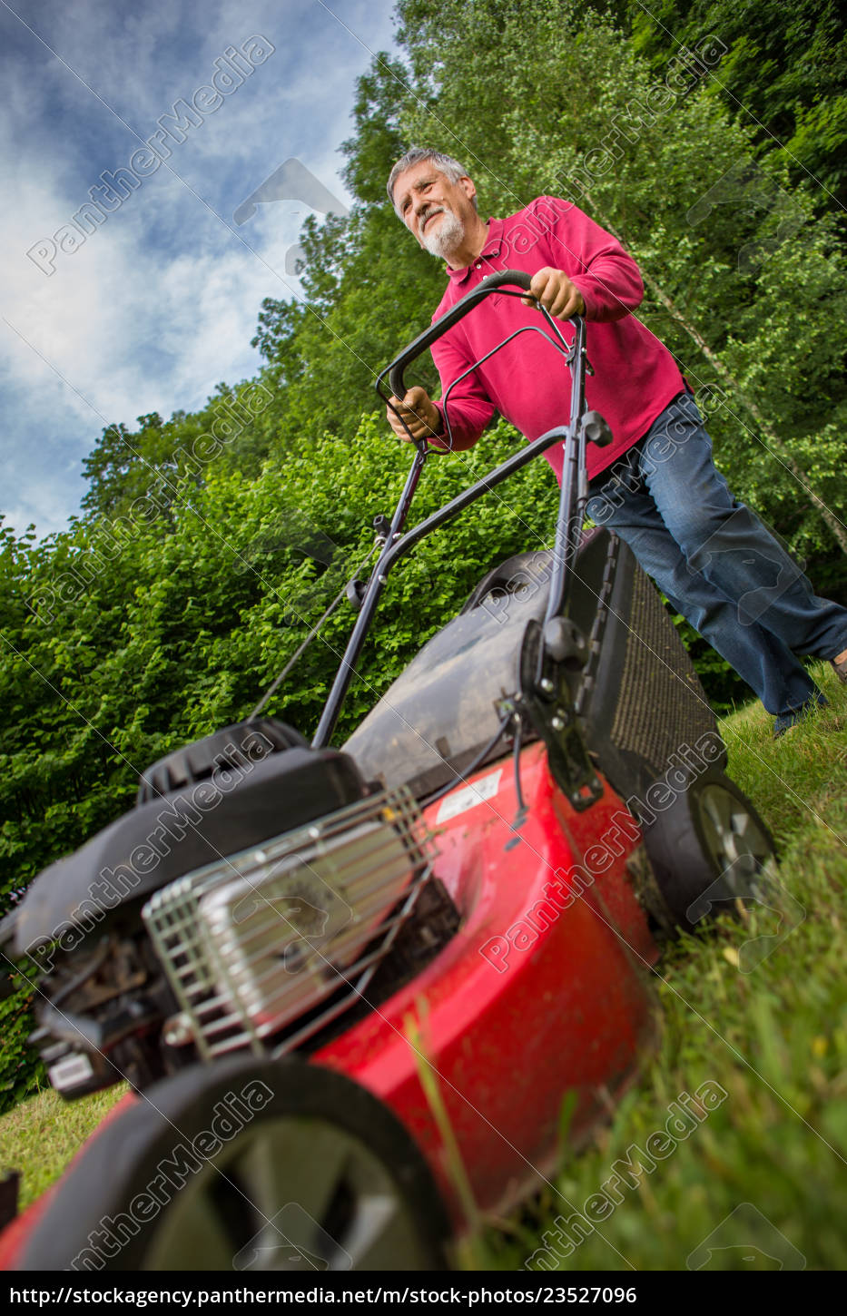 senior, man, mowing, the, lawn, in - 23527096