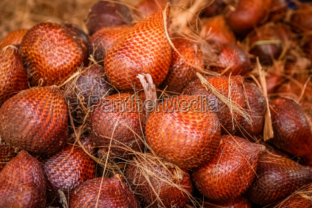delicious salak snake fruit