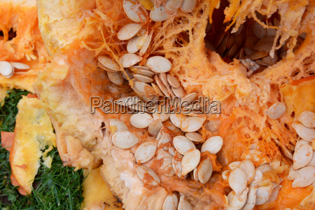 numerous oval pumpkin seeds among stringy