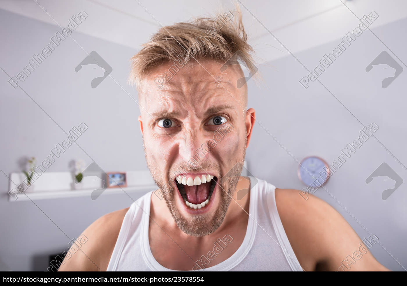 angry, young, man, at, home - 23578554