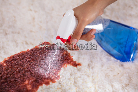 person's, hand, cleaning, stain, on, carpet - 23578464