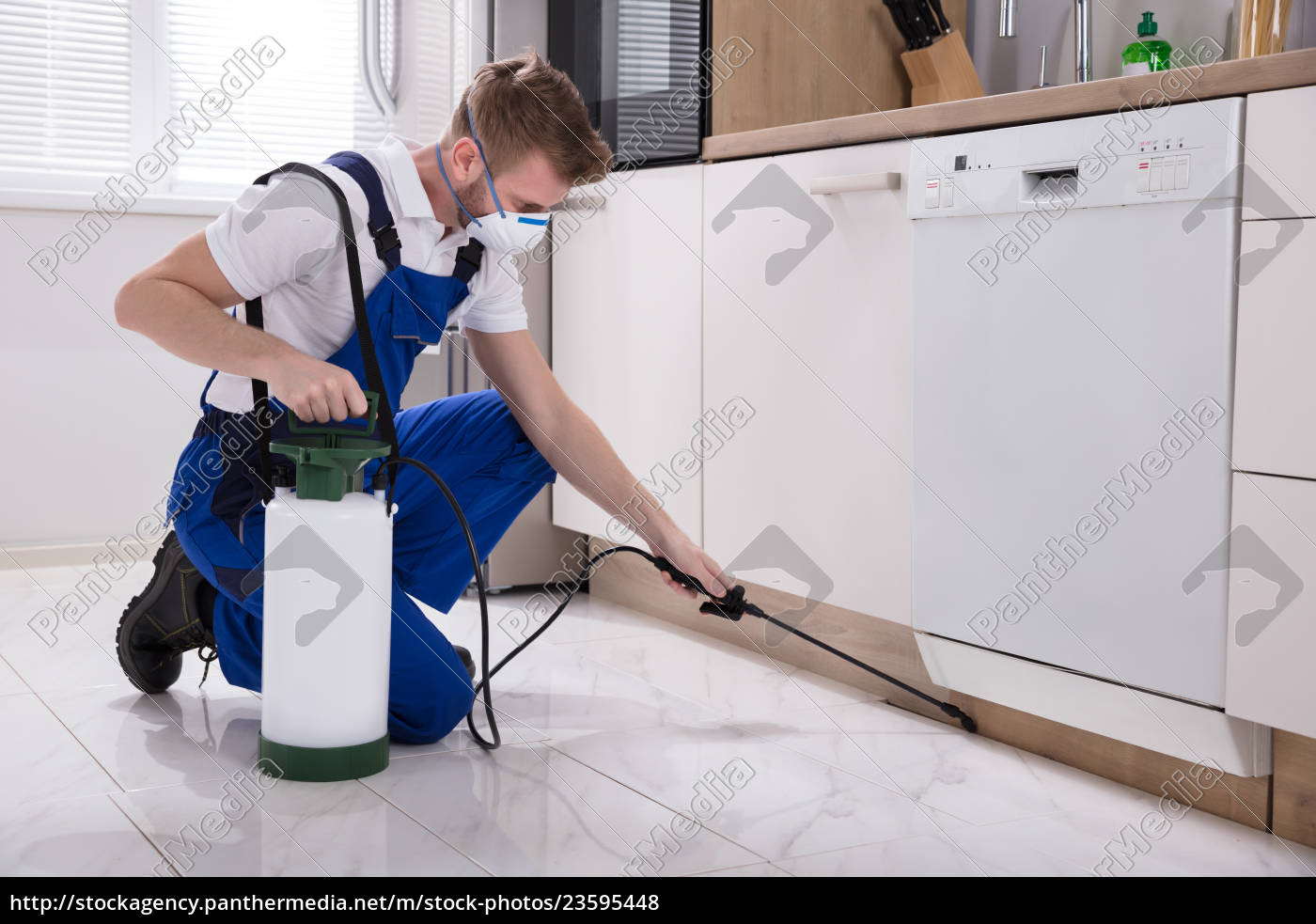 exterminator, worker, spraying, insecticide, chemical - 23595448