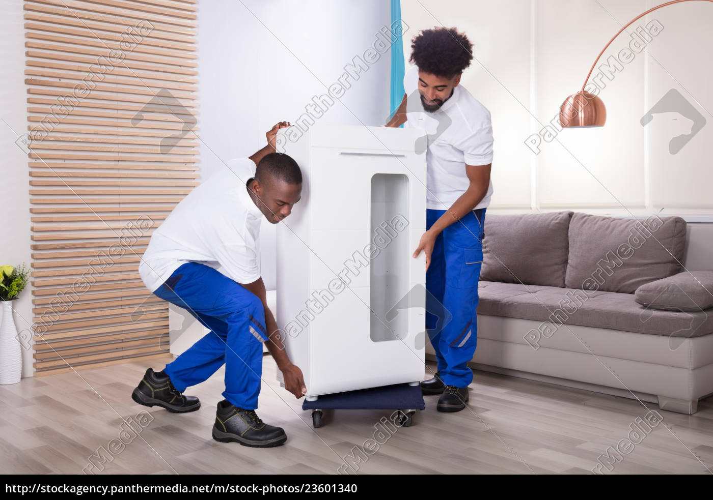 two, male, movers, placing, the, white - 23601340