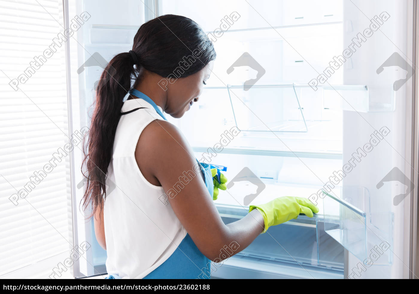 african, woman, cleaning, refrigerator - 23602188
