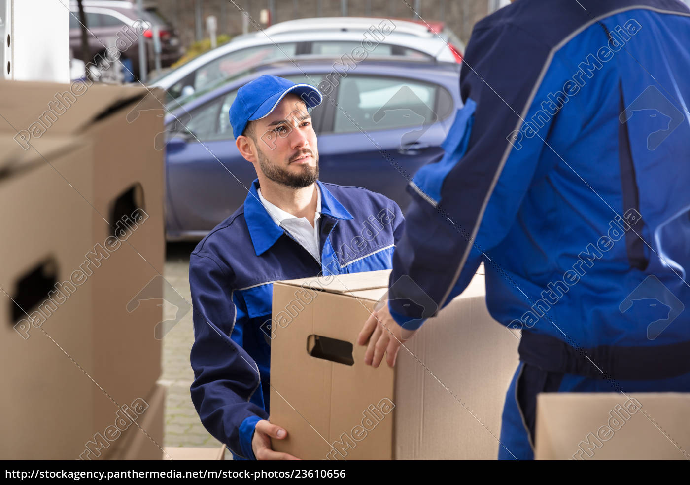 mover, holding, cardboard, box - 23610656