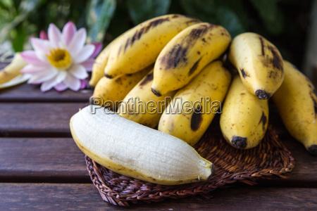 yellow cultivated banana raw organic yellow