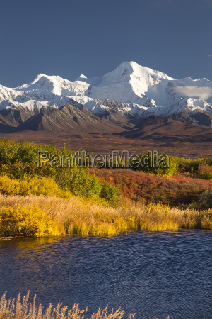denali national park road on a