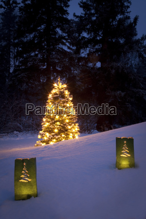 luminaries decorate the snow with a