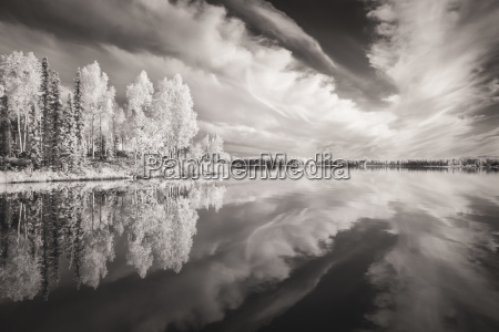 digital infrared ir capture of scenic