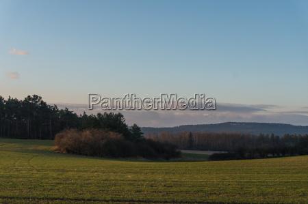 landscape in the winter