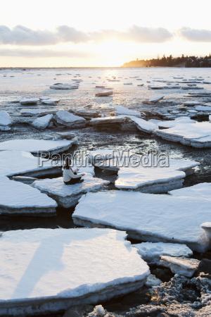 woman practicing meditation on ice chunks