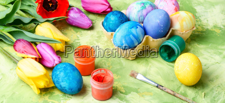 easter eggs paint and tulips