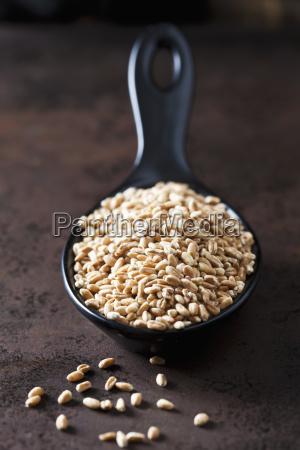 spoon of spelt grains on rusty