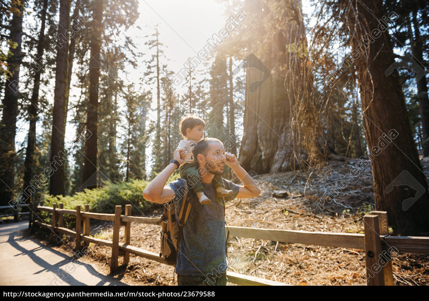 usa, , california, , father, and, baby, visiting - 23679588
