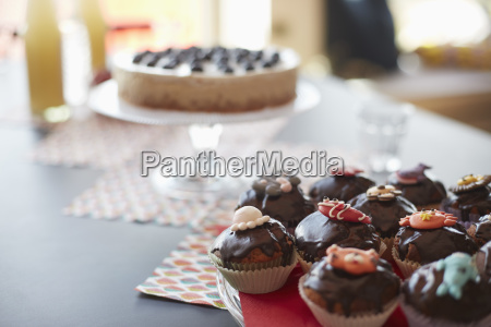 high angle view of cupcakes on