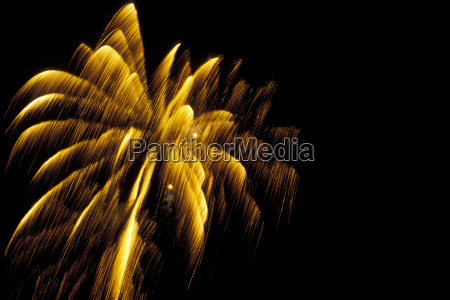 fireworks tooth palm
