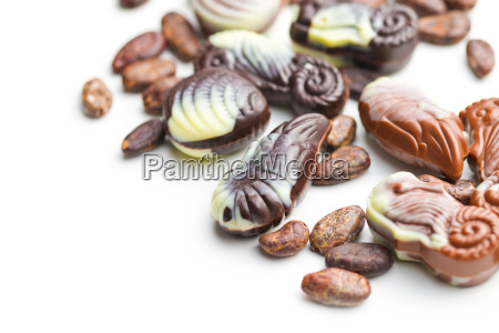 sweet chocolate seashells and cocoa beans