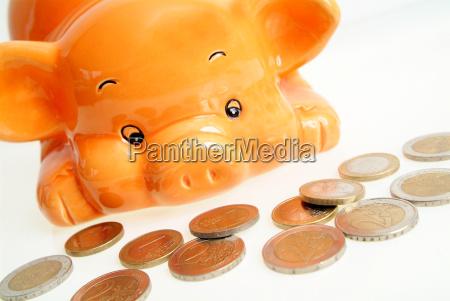 spraschwein and money