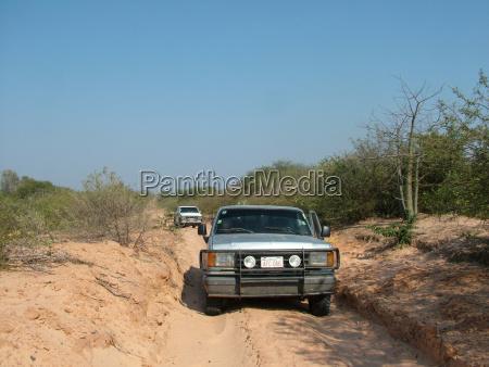 drive danger travel courageous dust car